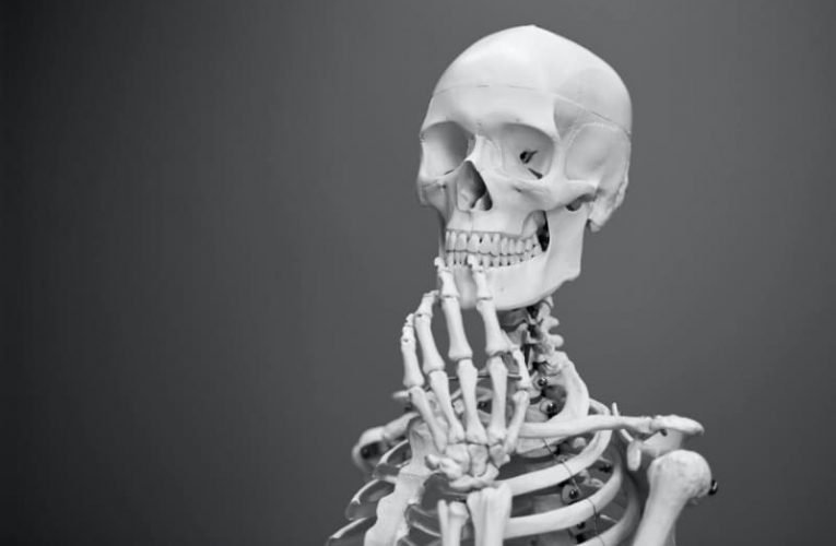 The Long-Running Debate Over Selling Human Bones Has Made it to TikTok