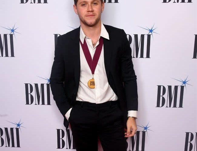 Niall Horan narrates new bedtime story